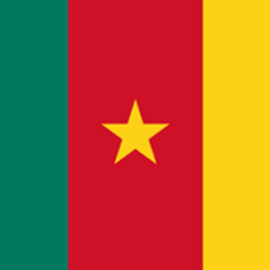 Send Money to Cameroon